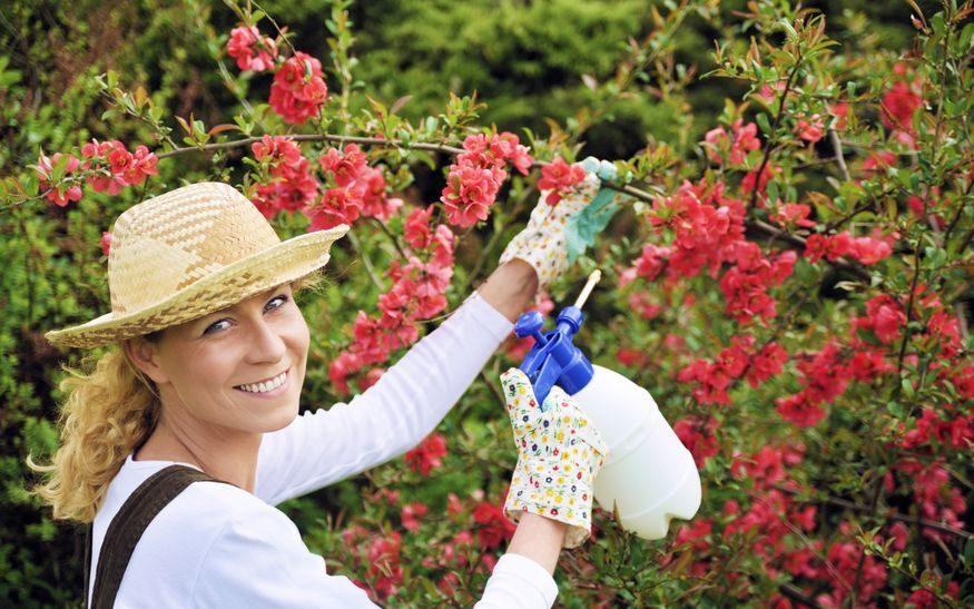 ガーデニングは、日焼け止め、帽子、長袖、手袋などで日光や毛虫の毛などをガード。